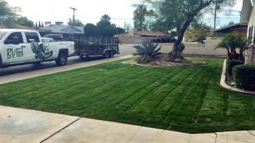 Residential-landscaping-service