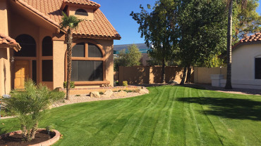 residential-lawn-maintenance